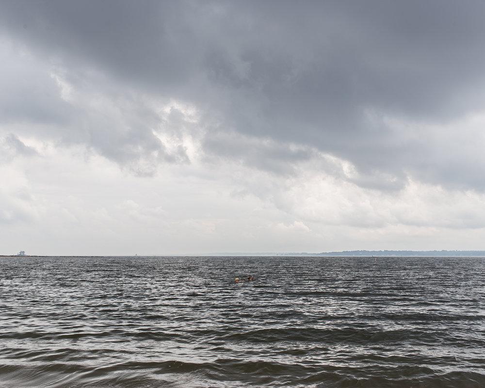 Pelham Bay, 2016