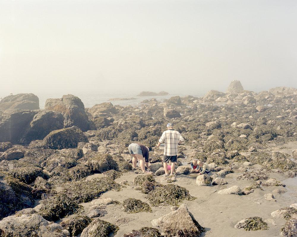 Beach Digging, 2009