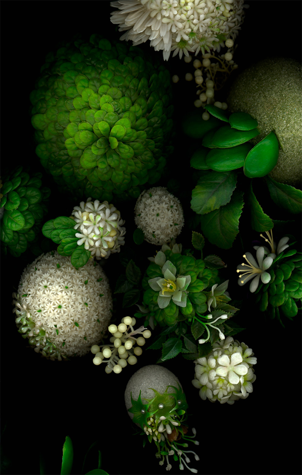 "greens, bioposy #2, digital c print, 2007, 42"" x 67"""