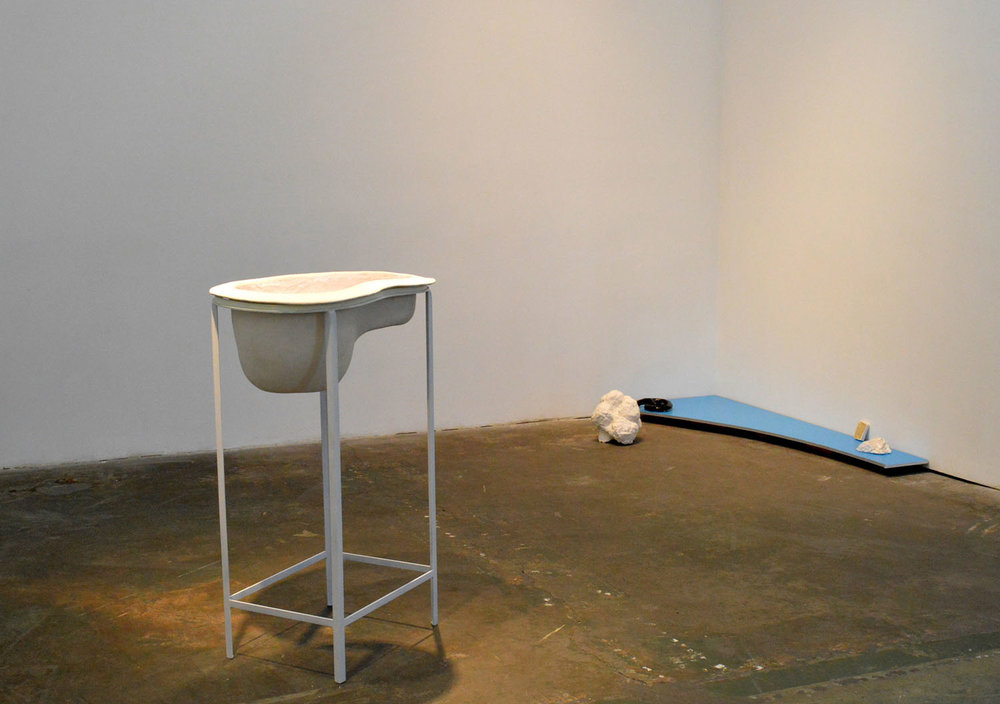 Echo exhibition , 2014 (installation view)