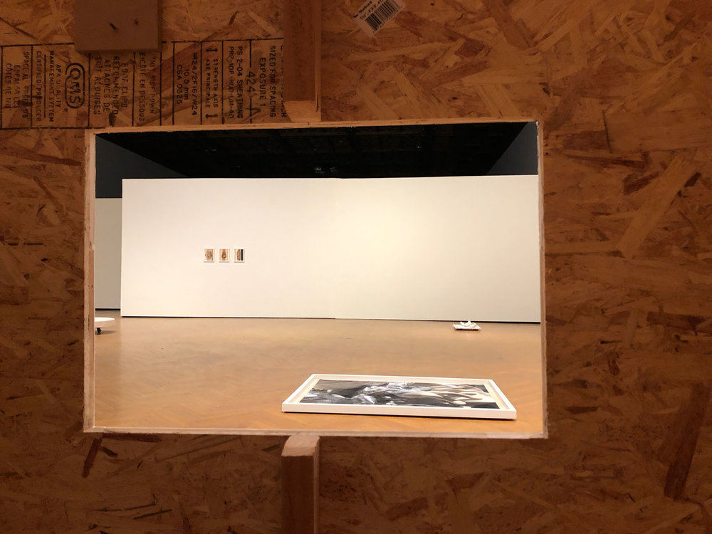 Into The Matter  exhibition, 2018, Mills College Art Museum (installation view)