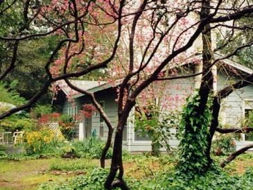 Tanglewood-house-365x274.jpg