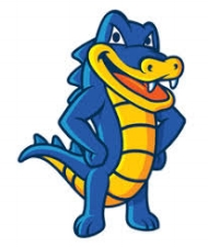 Hostgator    HostGator  (866-96-GATOR) is a leading provider of web hosting, VPS and dedicated servers