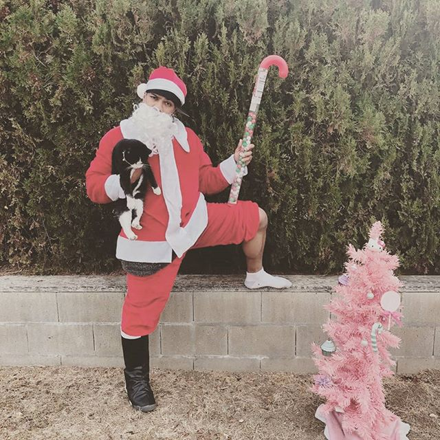ALSO!!!! MERRY MUTHA FLIPPIN CHRISMAS CUZ... ITS GANGSTA CLAUSE... I MADE A SANTA CLAUSE RAP THAT IMMA POST LATER FEATURING MY CAT MADISON & A PINK CHRISTMAS TREE CUZ... #MerryChristmas #HappyHoliday #SantaClause #HolidayHipHop #Because #CUZ #GANSTACLAUSE #YEAH #IREALLYDIDTHIS #HASHTAGRAPPER #HASHTAGGANG #SHOUTOUT #WORLDSTAR