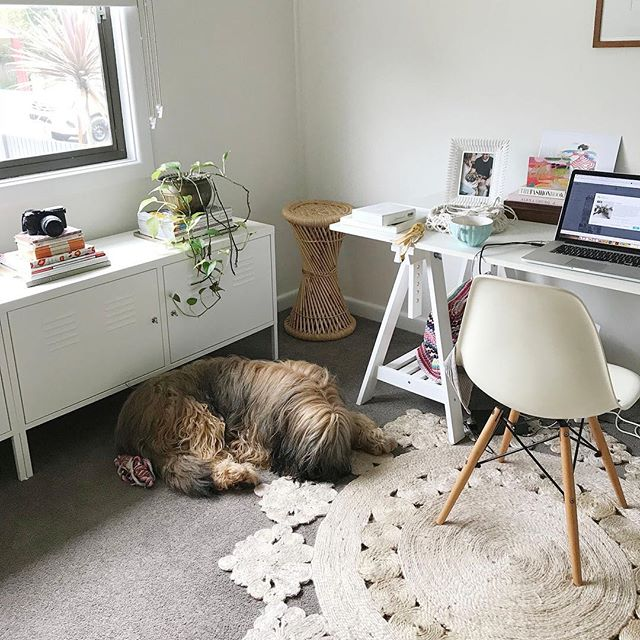 😴 Poor Marnie, the November rush has left her exhausted. It's just too much for this big lazy lug 🐶⠀ .⠀ .⠀ .⠀ .⠀ .⠀ .⠀ .⠀ .⠀ #girlbossesau #girlboss #femalefounders #womenwithambition #communityovercompetition #bossbabe #femaleboss #girltribe #fempire #womenwhowork #theleaguewomen #thefutureisfemale #hustlehard #femaleempowerment #femaleentrepreneur #womeninbiz #startuplife #deskgoals #dreambigger #shesaidyes #ido #instawedding #bridetobe #dogsdaily #weddinginspo #weddinginspiration #weddingideas #weddingstyle #weddingdetails #weddingplanning⠀