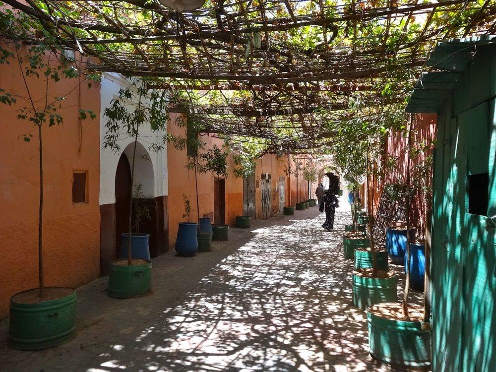 guided-walking-tour-marrakech-medina.jpg