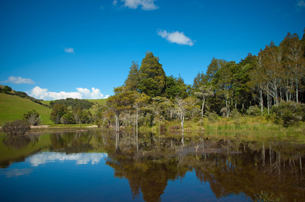 2-Water-Activities-and-Surroundings-Tahi-Nature-Reserve-Pataua-North-New-Zealand-Additional-member-property-Solstice-Club.jpg
