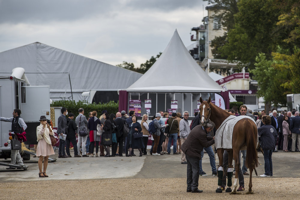 Spectators queue for tickets while horses are brought onto the grounds at the Qatar Prix de L'Arc de Triomphe in Chantilly, France on Oct. 2 2016.