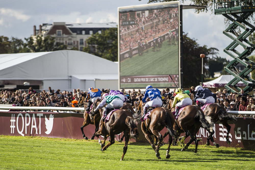 Found pulls away from the pack down the home stretch to win race 4 at the Qatar Prix de L'Arc de Triomphe on Oct 2, 2016