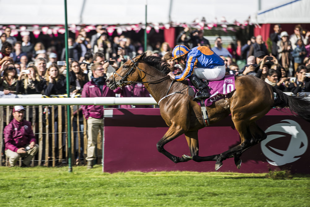 Jockey Ryan Moore rides Found to victory in race 4 of the Qatar Prix de L'Arc de Triomphe in Chantilly, France on Oct. 2 2016.