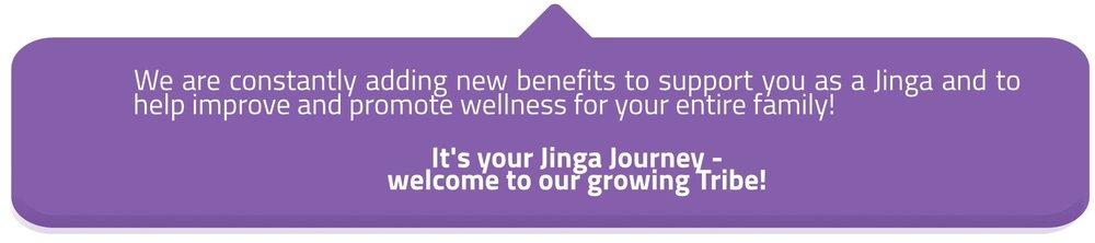 Jinga Life footer 1N-min.jpg