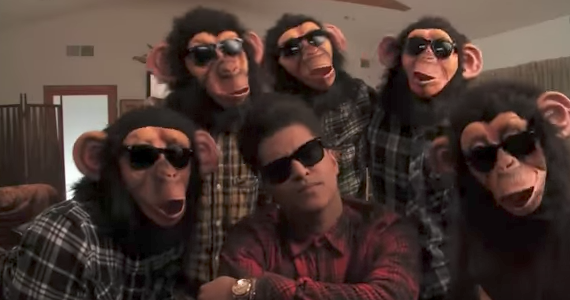 Video   But which one is Bruno?