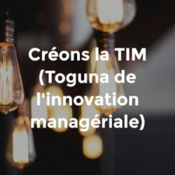 La TIM, Toguna de l'innovation managériale