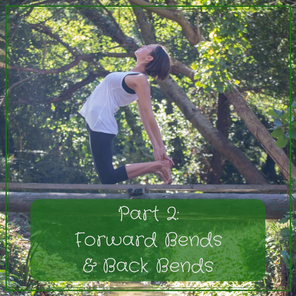 Video 2 (72mins) - In the second class we explore forward bends and back bends. We delve a little deeper into two common postures practised in Yoga and the theory and way most people should be practising them. Discover the best way in which you should do forward bends and back bends.