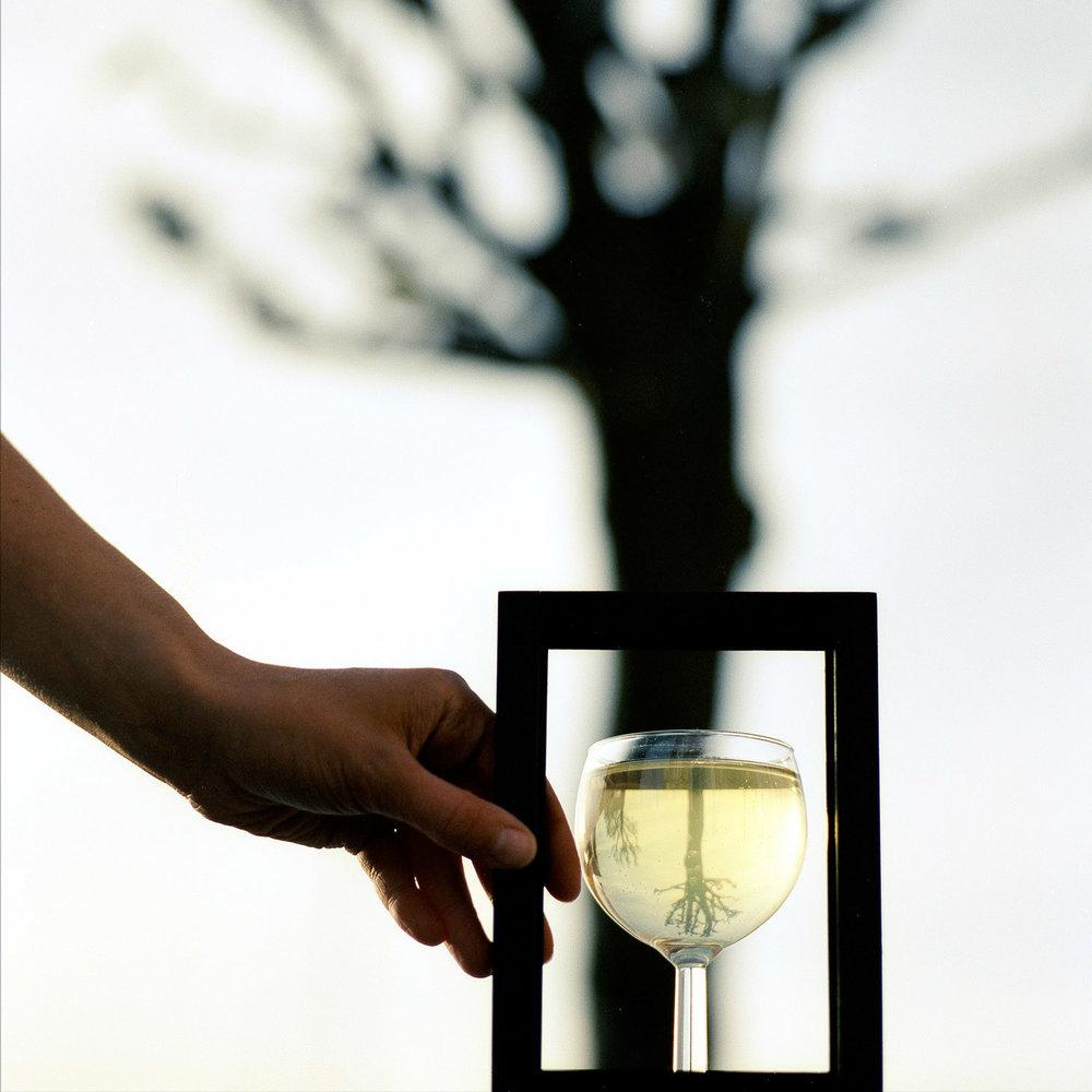 1500x1500_Glas-i-Ramme©FotoBenteJæger.jpg