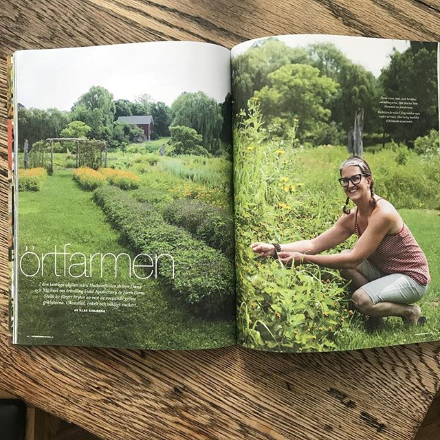 That time the pharm (and I) were featured in a Swedish magazine @tradgardsliv I am patiently waiting for the herbs and the ground to start their spring awakening. There may be snow ❄️ on the ground but spring is around the corner 🌱🍄🐍