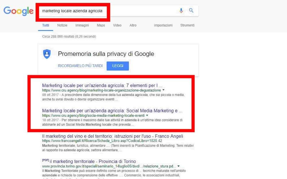 marketing locale per un'azienda agricola nella ricerca su google con i primi due risultati