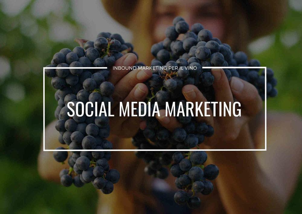 la migliore strategia di social media marketing per una casa vinicola
