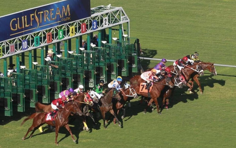 Gulfstream Park Racing, Casino and Village -  Home of the Florida Derby and Sunshine Millions Racing SeriesRacetrack - 35,000 capacity, 25 suitesCasino – Open 365 days/yr., live entertainment weeklyVillage – Retail Shopping and Dining ComplexServicing since 2009Full service janitorial