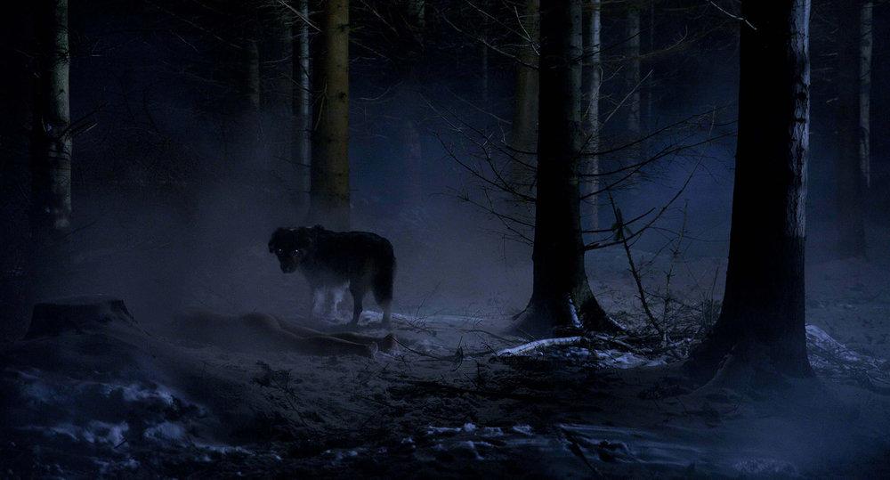 Darke - Still Photograph