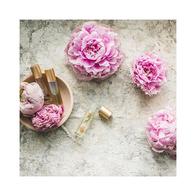 Just two of my fave things: Peonies & oils! ⚪️Did you know that for centuries people have been using essential oils not only for physical wellness but emotional wellness too? As a therapist I find this fascinating! The fact that we can use these oils to help support us emotionally with no side effects is amazing. We have a beautiful collection of emotional aromatherapy oils: Forigive, Passion, Console, Cheer, Peace and motivate 🌿Dm me to order any of them! ⚪️With the help of these emotional aromatherapy oils, you can lead your heart to let go of past sorrows, painful emotional hurts, and persistent feelings of worry to reclaim a life full of energy, heart, and dreams. Dealing with negative emotions can sometimes feel impossibly overwhelming, but often the only thing you really need to get yourself out of the rut is a little mental nudge in the right direction. The natural compounds present in each of these essential oils will give your body, mind, and soul that extra boost to get you back in the game and enjoying life in all its beauty and complexity. #lightandlotus #peonies
