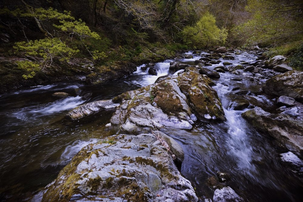 Exmoor River. Fujifilm XT2 - 1/15 sec hand held.