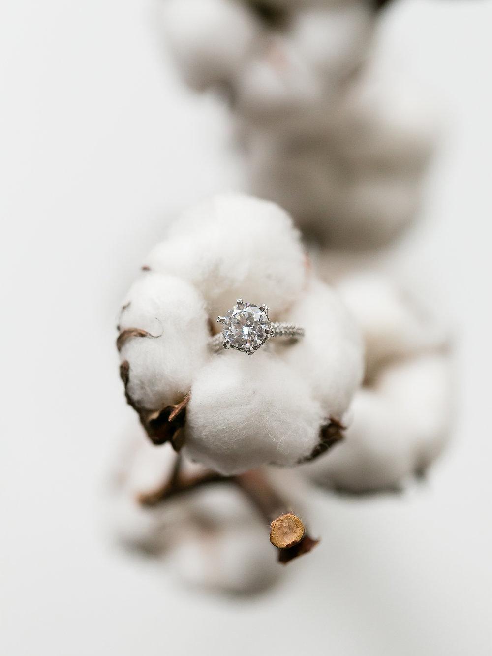 Aquatopia-Wedding-Ottawa-Wedding-Photographer-Stephanie-Mason-Photography-48.jpg
