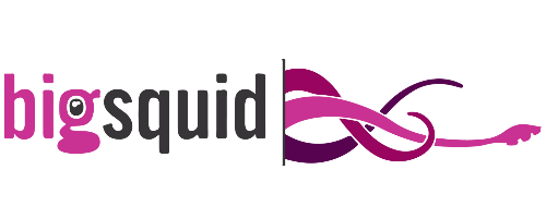 BigSquid  Initial Investment:  Seed in 2015   Predictive analytics for executive decision makers.  (Link)