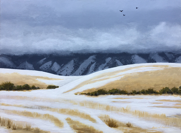 """Idaho fields after the first snow"""