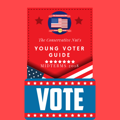 Midterms Are Coming! - Here's your guide to keeping informed