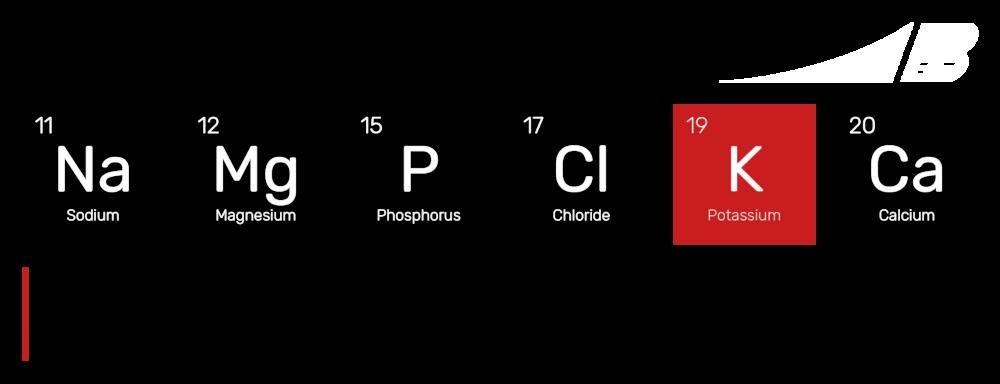 Potassium-Electrolytes.png