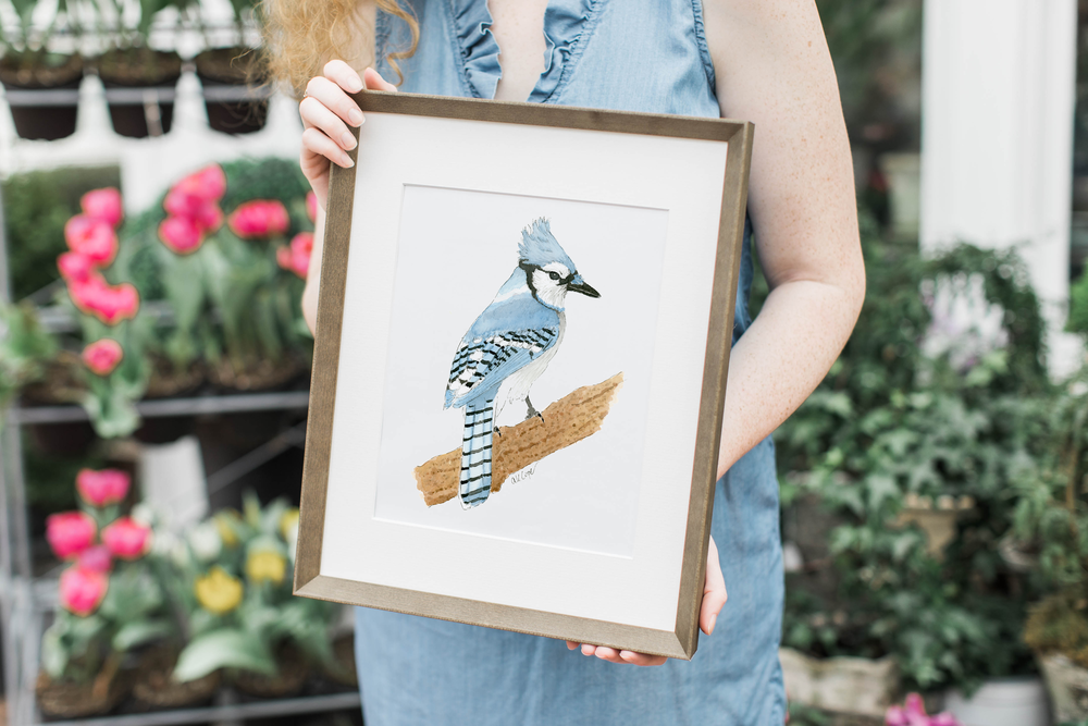 Southern Bird Blue Jay Watercolor Anna Kay Artworks Wood.png