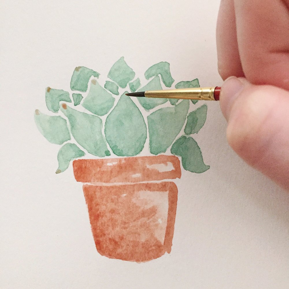 Free Watercolor Succulent Tutorial 11 Anna Kay Artworks