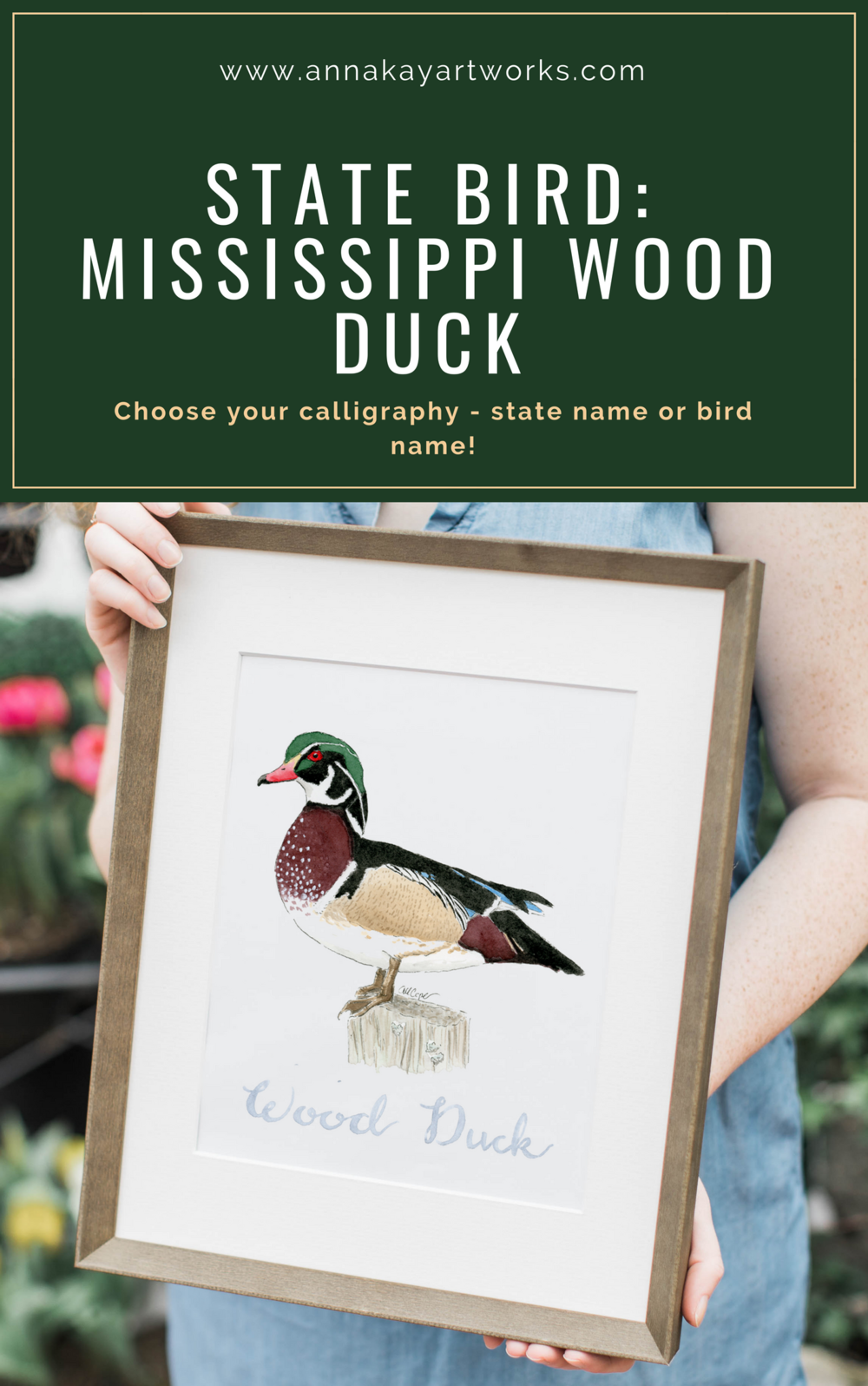 Watercolor Wood Duck Mississippi State Bird Anna Kay Artworks