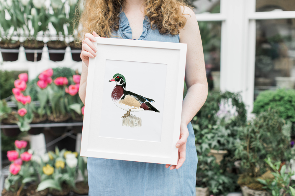 Watercolor Wood Duck Vertical White Frame.png