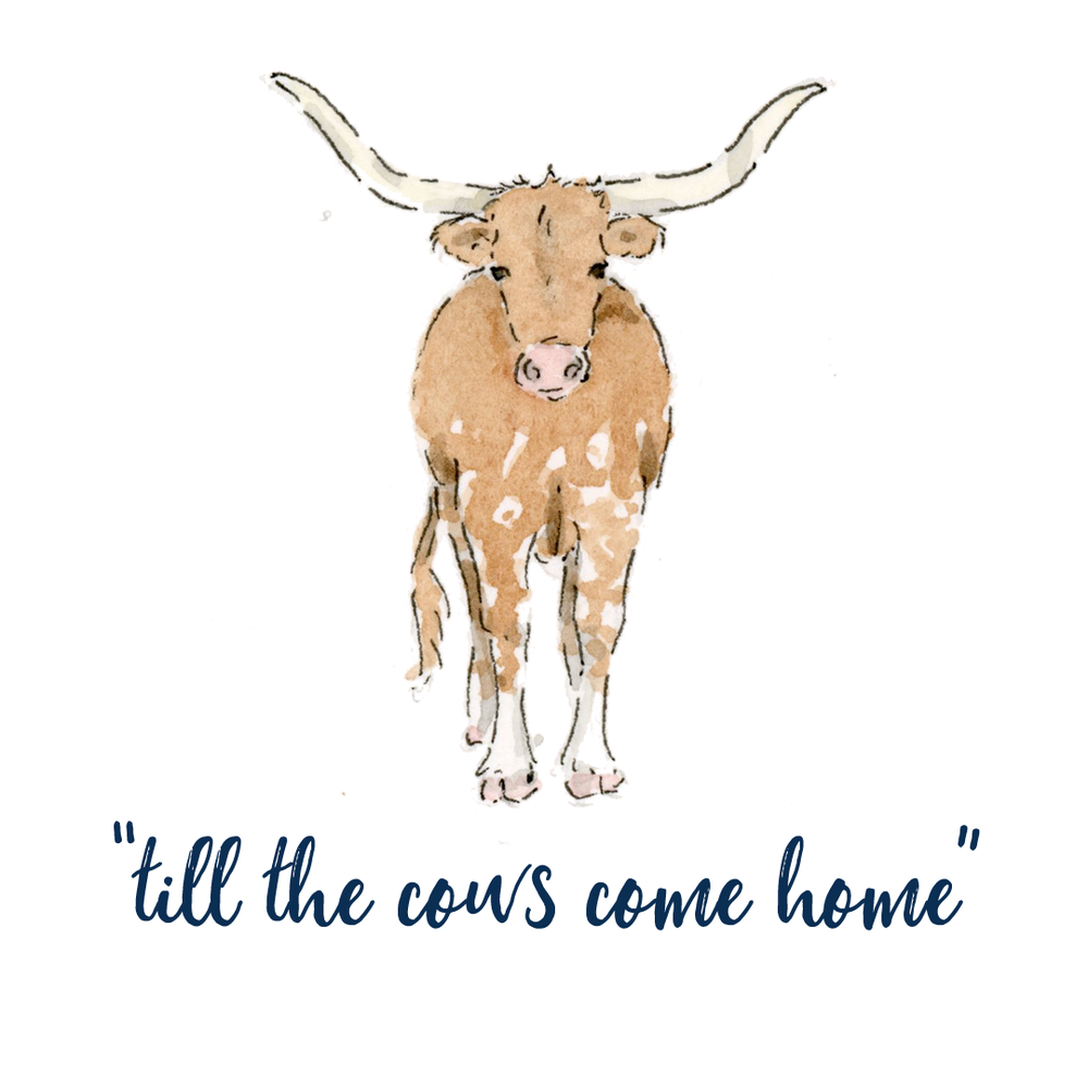 cows come home.png