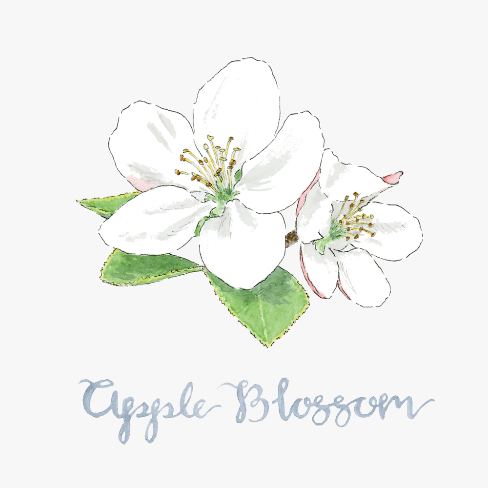 Apple Blossom Site.png
