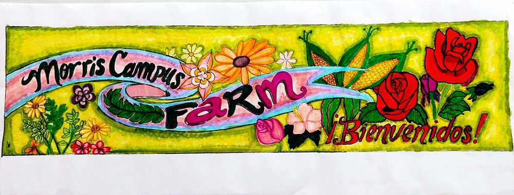 Ideas for a banner facing the community announcing the farm flourished from envisioning sessions with Mr. Samonte's Bronx International class. The design includes many original drawings from students, which were then colored in by different groups in the classroom, printed in large format, and painted. We hope to finish and hang the banner soon!