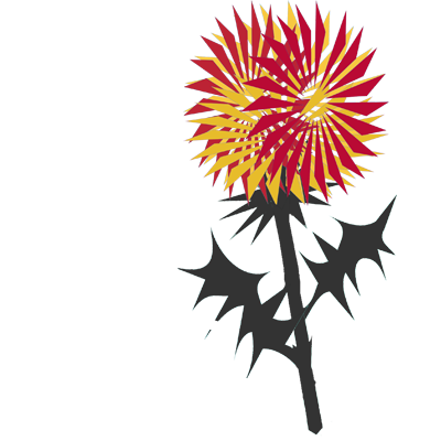 The Jags Trust
