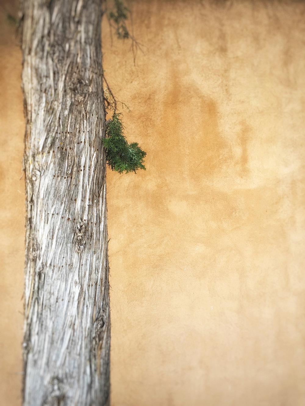 Solitary in Santa Fe