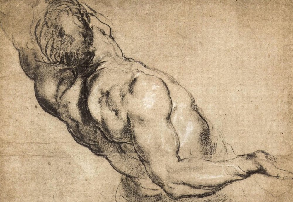 Peter-Paul-Rubens-Study-of-a-Man's-Torso.jpg