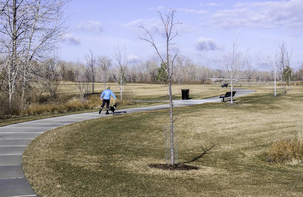 MAW Park 140305_0074.jpg