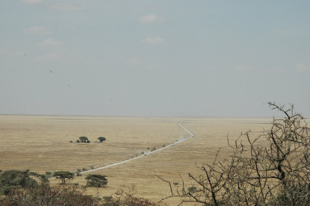 Roads leading to the Serengeti