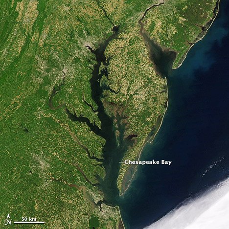 Satellite Image of the Chesapeake Bay.   NASA Image courtesy of the MODIS Rapid Response Team.