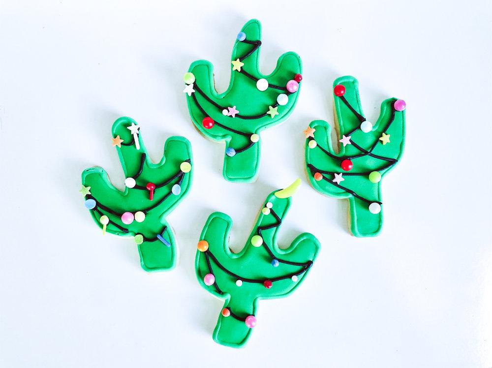 Cactus finale-2.jpg