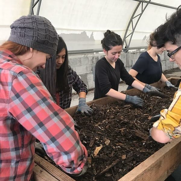 Some of the STP team got their hands dirty this morning at the Red Hook Community Farm Compost Operation. Thank you @brooklynbotanic for having us. We learned a ton and played in dirt! Walk-in volunteers can come Friday and Saturday mornings, and everyone there was amazing!