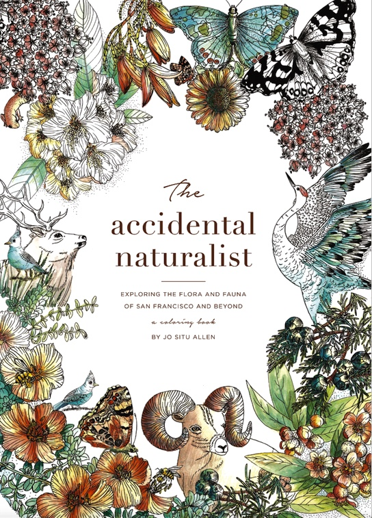 THE ACCIDENTAL NATURALIST - Sustainability Expert Jo Situ Allen to Launch New Book at Creating Equilibrium Tahoe Conference