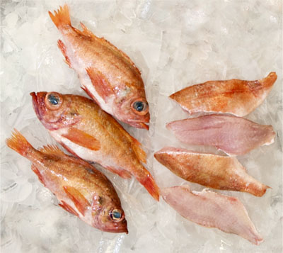 Red Fish Racks.jpg