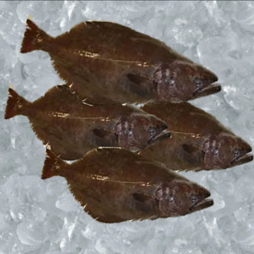 Greenland Halibut Cape Seafoods.jpg