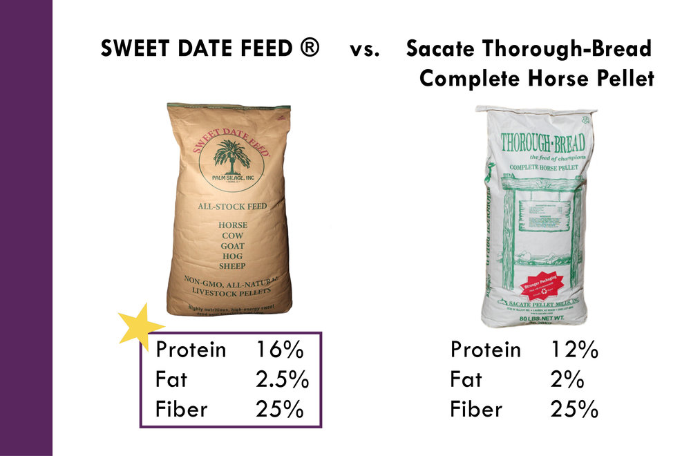 Why Sweet Date Feed_Palm Silage, Inc. 10-11-179.jpg
